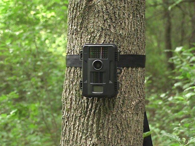 Game Cameras